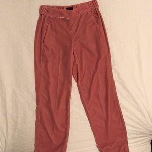 -J Crew- velvet jogger pants